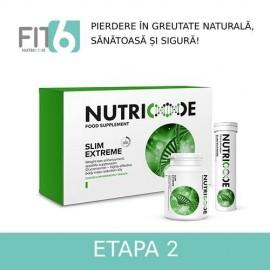 FIT 6 - ETAPA 2