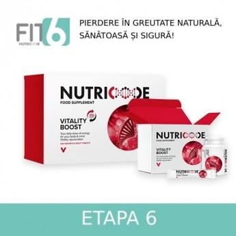 FIT 6 - ETAPA 6 -